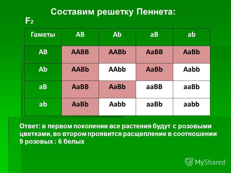 ГаметыАВAbaBab ABAABBAABbAaBBAaBb AbAABbAAbbAaBbAabb aBAaBBAaBbaaBBaaBb abAaBbAabbaaBbaabb F2F2 Ответ: в первом поколении все растения будут с розовыми цветками, во втором проявится расщепление в соотношении 9 розовых : 6 белых Составим решетку Пенне