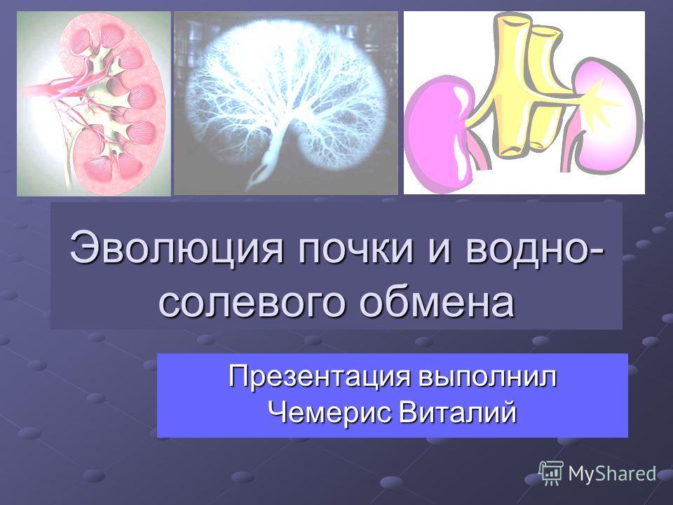 Эволюция почки и водно- солевого обмена Презентация выполнил Чемерис Виталий