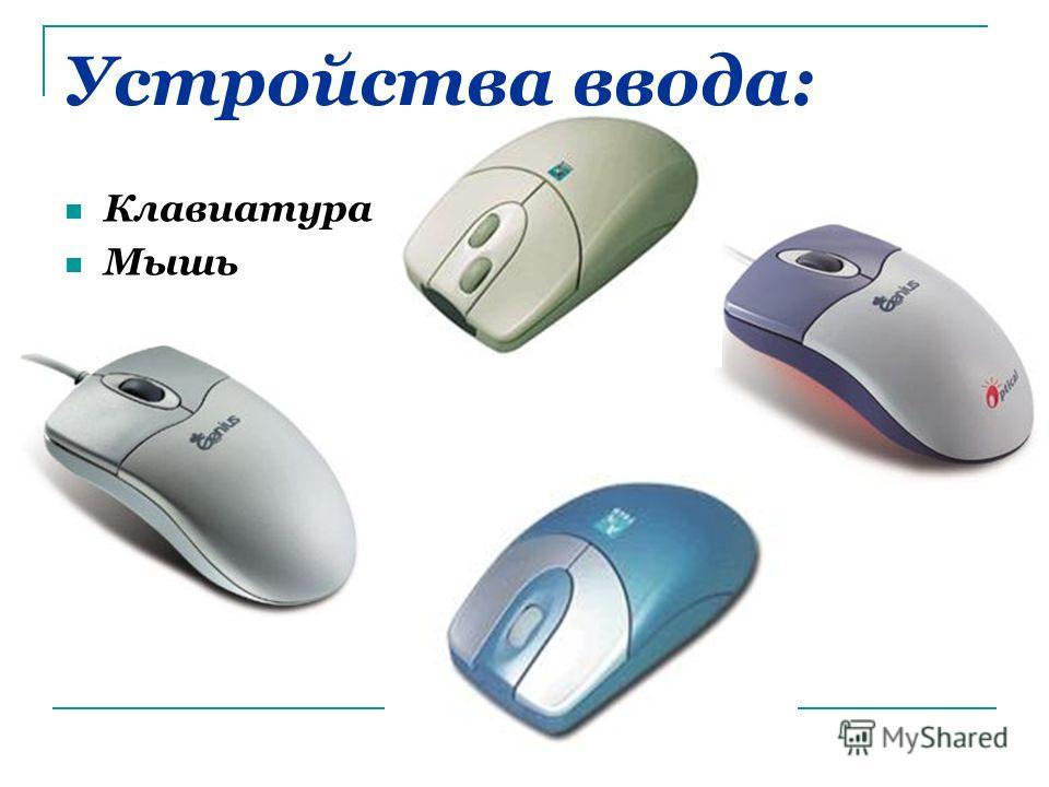 Устройства ввода: Клавиатура Мышь