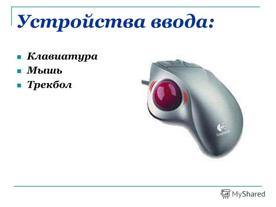 Устройства ввода: Клавиатура Мышь Трекбол