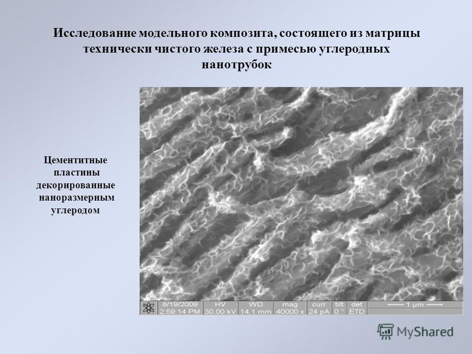 Цементитные пластины декорированные наноразмерным углеродом Исследование модельного композита, состоящего из матрицы технически чистого железа с примесью углеродных нанотрубок