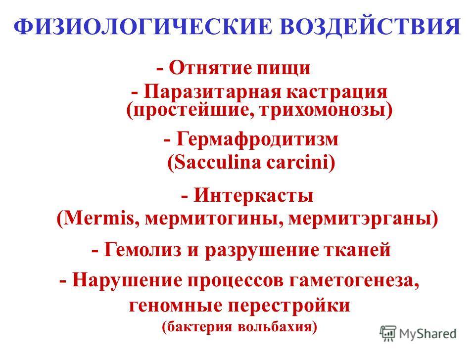 МЕХАНИЧЕСКИЕ ВОЗДЕЙСТВИЯ - Повреждение внешних покровов органами прикрепления и принятия пищи - Миграции (циркадные миграции филлярий) - Закупорка кишечника и протоков (аскаридоз, цестодозы, фасциолез, алвеококкоз, филляриозы)