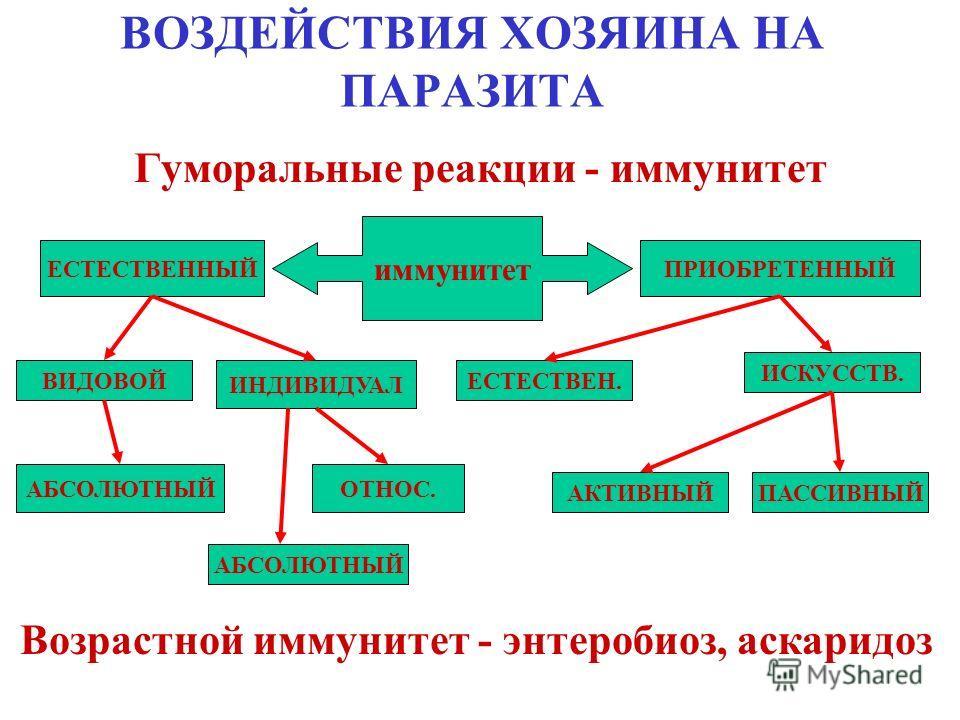 ВОЗДЕЙСТВИЯ ХОЗЯИНА НА ПАРАЗИТА - Клеточные реакции - гипертрофия пораженных клеток - Тканевые реакции > соединительнотканная капсула - сосальщики, нематоды >гнойная капсула - Diphyllobothrium latum >тиллации - гипертрофированные внешние покровы, жем
