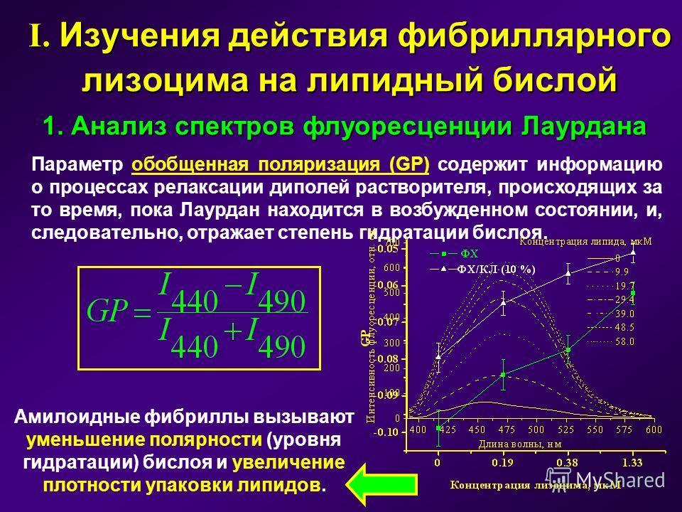 I. Изучения действия фибриллярного лизоцима на липидный бислой 1. Анализ спектров флуоресценции Лаурдана Параметр обобщенная поляризация (GP) содержит информацию о процессах релаксации диполей растворителя, происходящих за то время, пока Лаурдан нахо