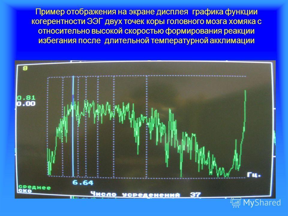 Пример отображения на экране дисплея графика функции когерентности ЭЭГ двух точек коры головного мозга хомяка с относительно высокой скоростью формирования реакции избегания после длительной температурной акклимации
