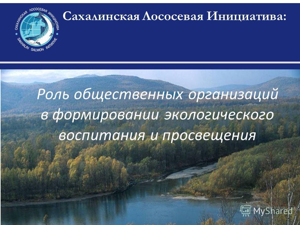 Сахалинская Лососевая Инициатива: Роль общественных организаций в формировании экологического воспитания и просвещения