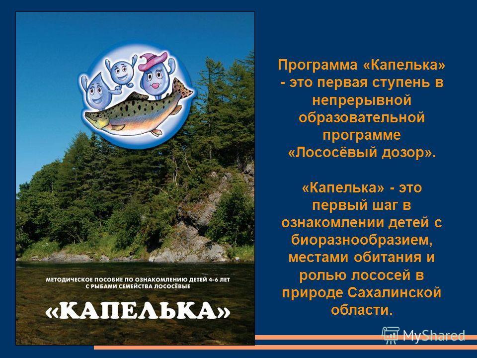 Программа «Капелька» - это первая ступень в непрерывной образовательной программе «Лососёвый дозор». «Капелька» - это первый шаг в ознакомлении детей с биоразнообразием, местами обитания и ролью лососей в природе Сахалинской области.