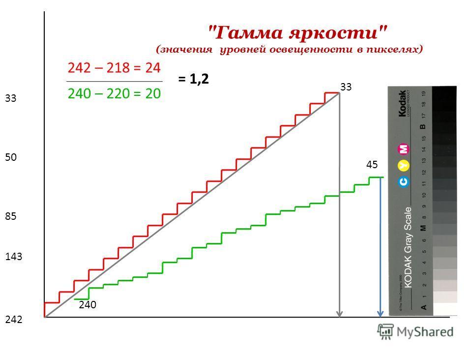 33 45 242 143 85 50 33 Гамма яркости (значения уровней освещенности в пикселях) 242 – 218 = 24 240 – 220 = 20 = 1,2 240
