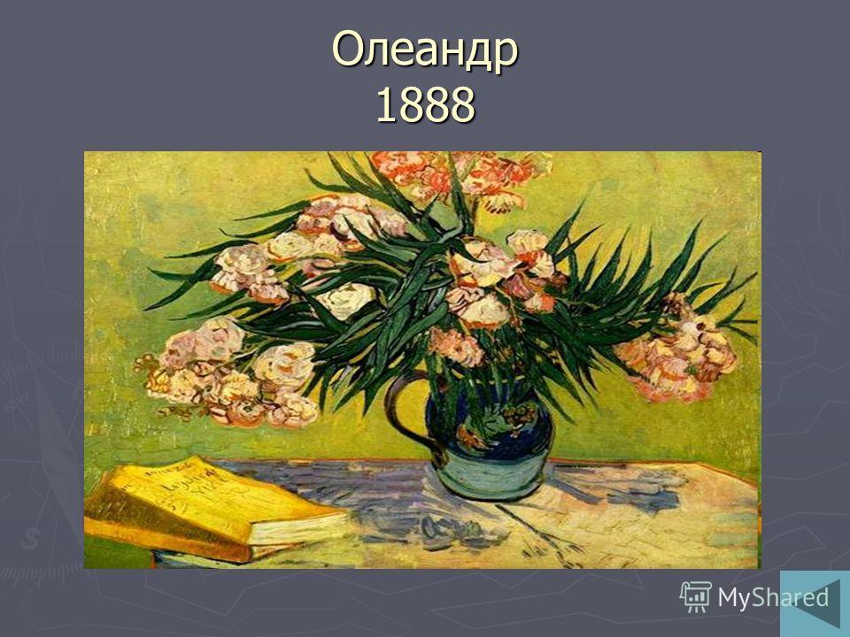 Олеандр 1888