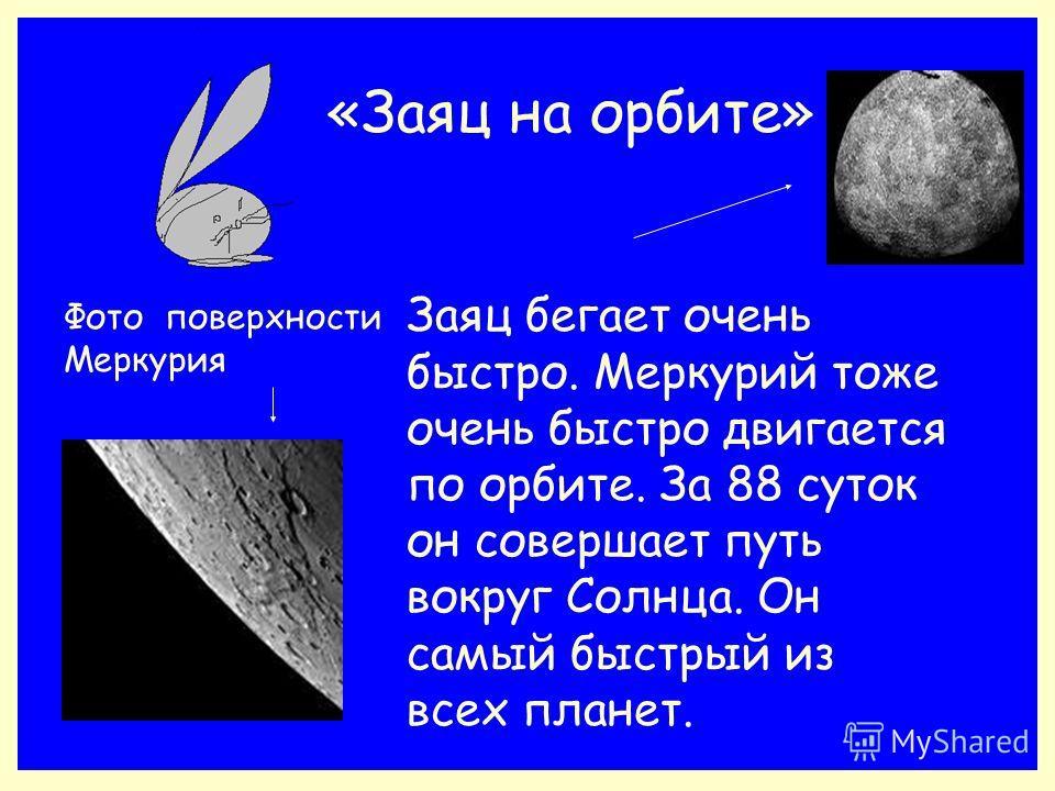 «Заяц на орбите» Фото поверхности Меркурия Заяц бегает очень быстро. Меркурий тоже очень быстро двигается по орбите. За 88 суток он совершает путь вокруг Солнца. Он самый быстрый из всех планет.
