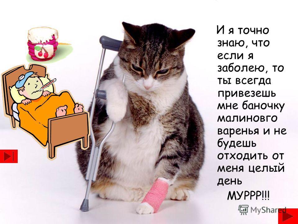 И я точно знаю, что если я заболею, то ты всегда привезешь мне баночку малиновго варенья и не будешь отходить от меня целый день МУРРР!!!