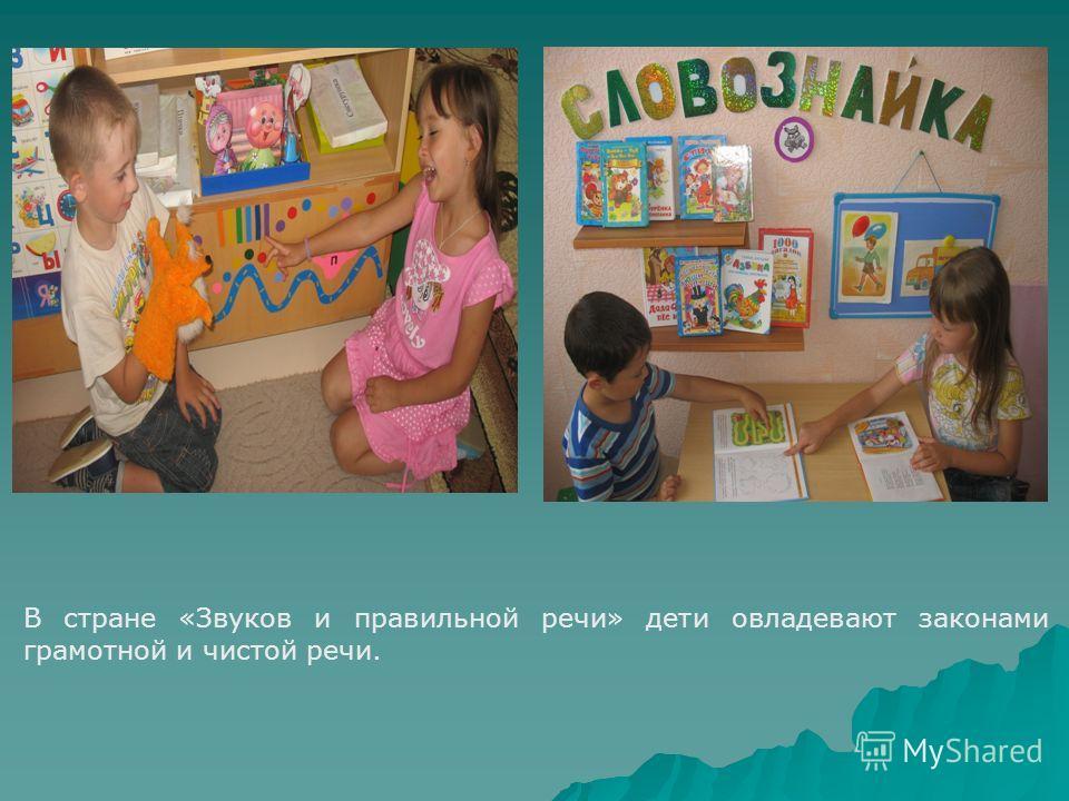 В стране «Звуков и правильной речи» дети овладевают законами грамотной и чистой речи.