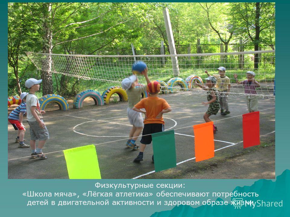 Физкультурные секции: «Школа мяча», «Лёгкая атлетика» обеспечивают потребность детей в двигательной активности и здоровом образе жизни
