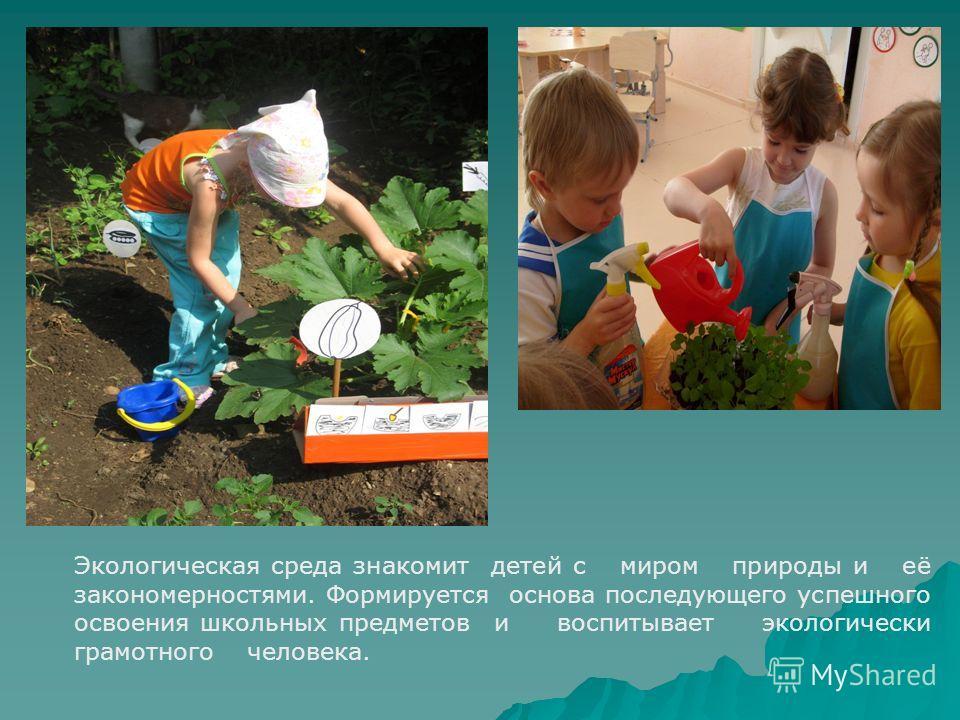 Экологическая среда знакомит детей с миром природы и её закономерностями. Формируется основа последующего успешного освоения школьных предметов и воспитывает экологически грамотного человека.