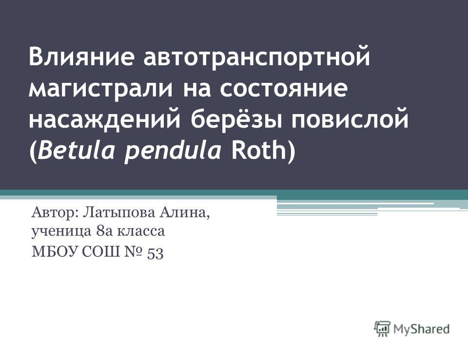 Влияние автотранспортной магистрали на состояние насаждений берёзы повислой (Betula pendula Roth) Автор: Латыпова Алина, ученица 8а класса МБОУ СОШ 53