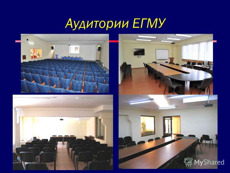 Аудитории ЕГМУ