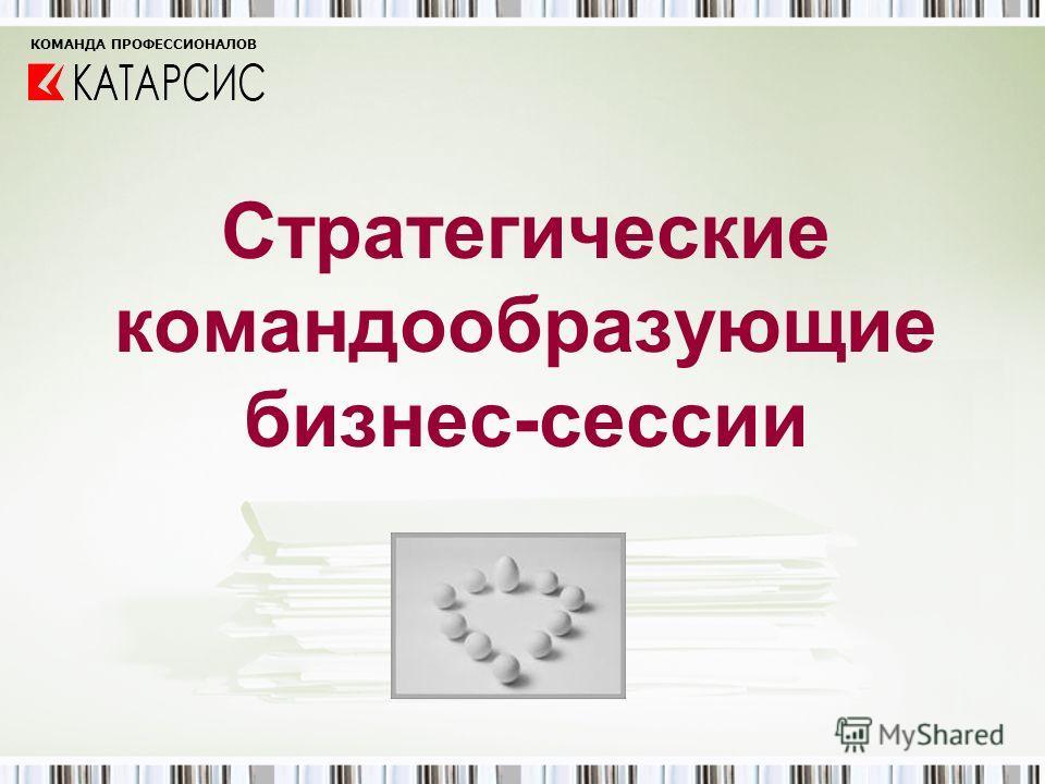 Стратегические командообразующие бизнес-сессии КОМАНДА ПРОФЕССИОНАЛОВ