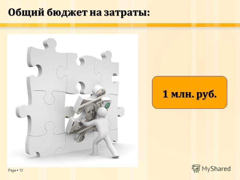 Page 13 Общий бюджет на затраты: 1 млн. руб.