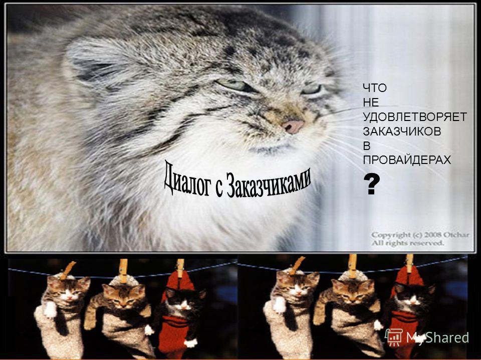 www.Corporate-Universities.ru ЧТО НЕ УДОВЛЕТВОРЯЕТ ЗАКАЗЧИКОВ В ПРОВАЙДЕРАХ ?