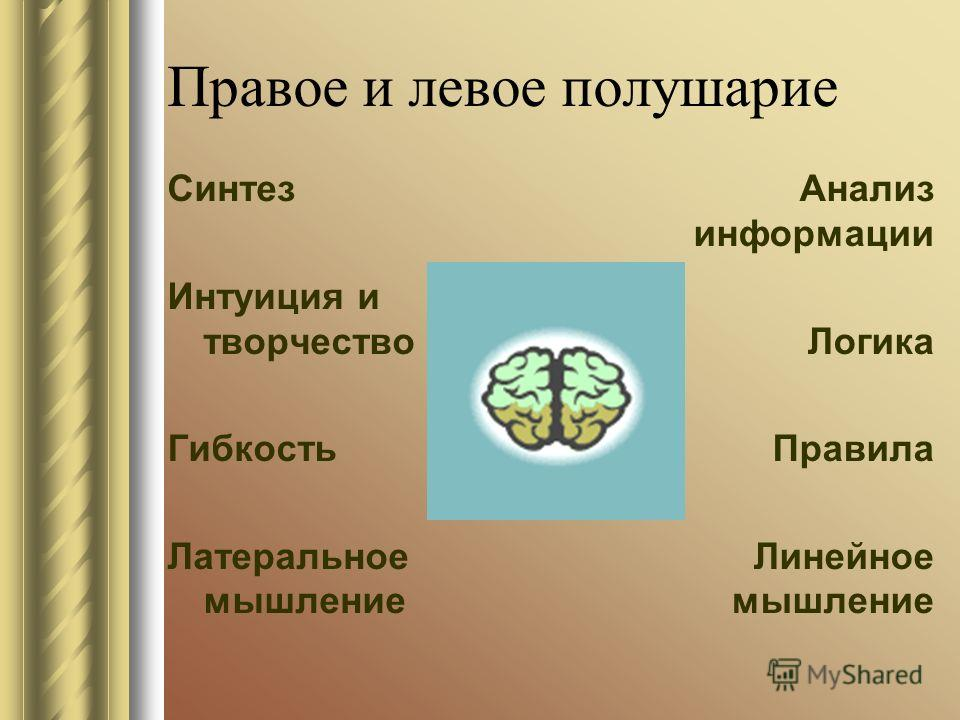 Правое и левое полушарие Синтез Интуиция и творчество Гибкость Латеральное мышление Анализ информации Логика Правила Линейное мышление