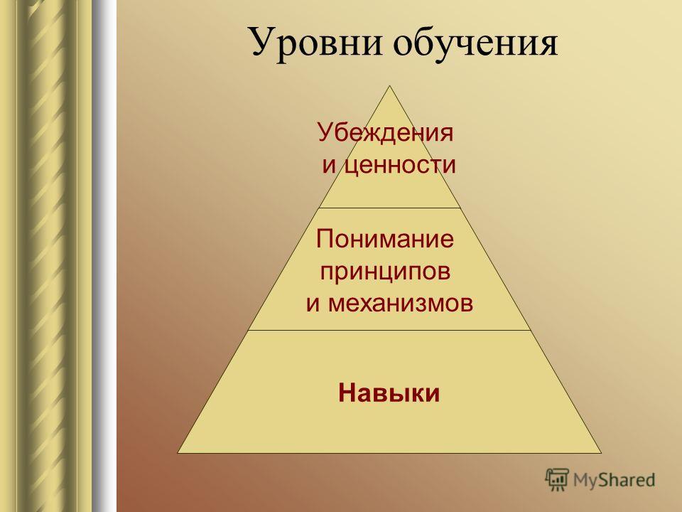 Уровни обучения Убеждения и ценности Понимание принципов и механизмов Навыки