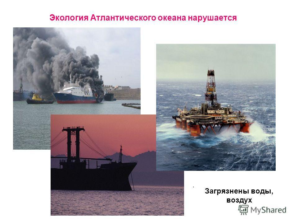 Экология Атлантического океана нарушается. Загрязнены воды, воздух