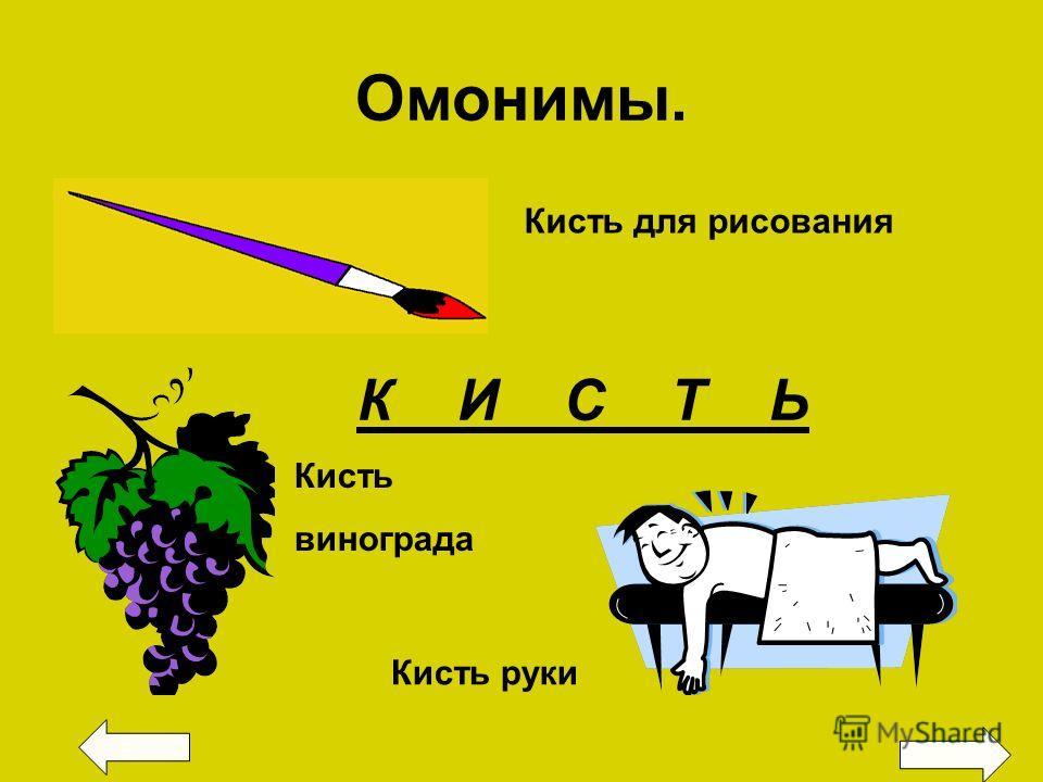 Омонимы. К И С Т Ь Кисть для рисования Кисть руки Кисть винограда