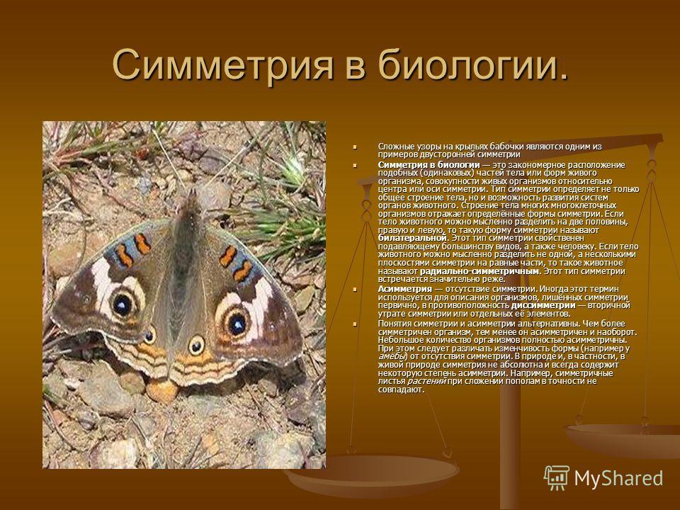 Симметрия в биологии. Сложные узоры на крыльях бабочки являются одним из примеров двусторонней симметрии Симметрия в биологии это закономерное расположение подобных (одинаковых) частей тела или форм живого организма, совокупности живых организмов отн