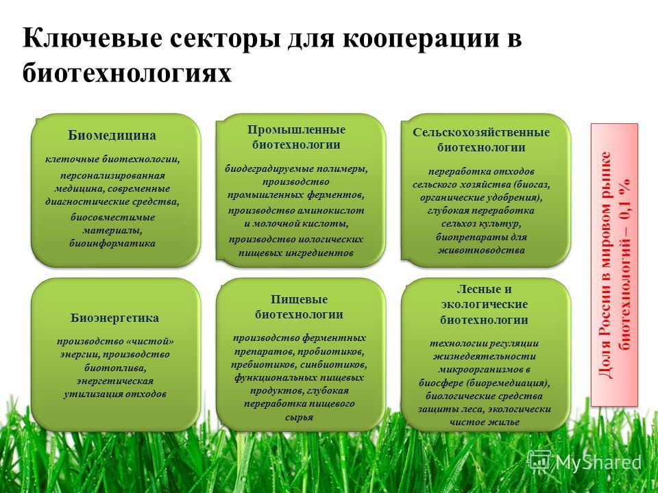 Ключевые секторы для кооперации в биотехнологиях Доля России в мировом рынке биотехнологий – 0,1 % Биомедицина клеточные биотехнологии, персонализированная медицина, современные диагностические средства, биосовместимые материалы, биоинформатика Биоме