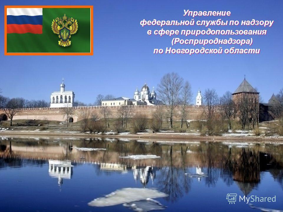Управление федеральной службы по надзору в сфере природопользования (Росприроднадзора) по Новгородской области