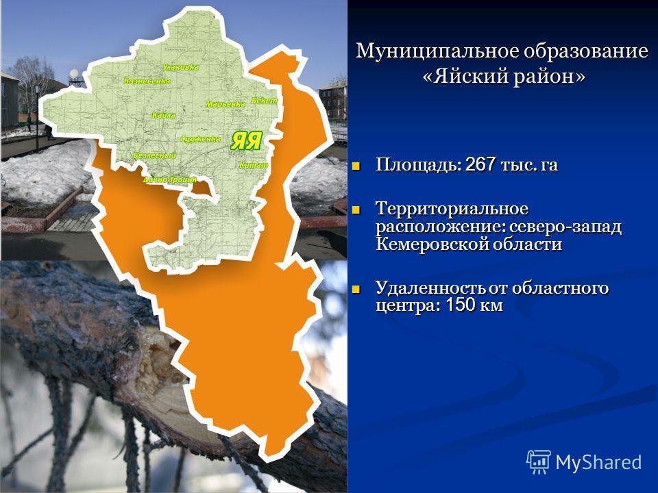 Площадь: 267 тыс. га Площадь: 267 тыс. га Территориальное расположение: северо-запад Кемеровской области Территориальное расположение: северо-запад Кемеровской области Удаленность от областного центра: 150 км Удаленность от областного центра: 150 км