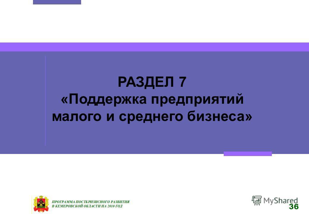 36 РАЗДЕЛ 7 «Поддержка предприятий малого и среднего бизнеса»