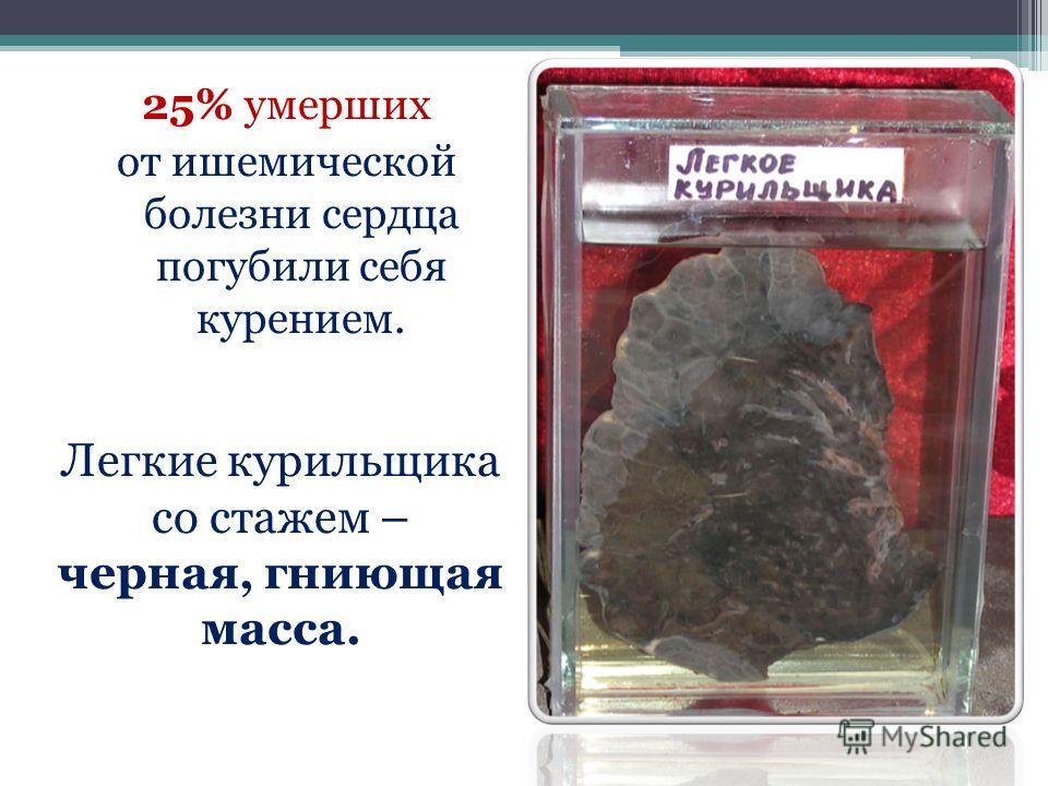 25% умерших от ишемической болезни сердца погубили себя курением. Легкие курильщика со стажем – черная, гниющая масса.