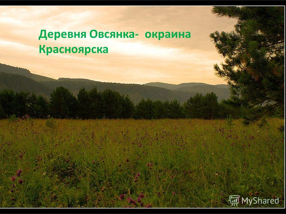 Деревня Овсянка- окраина Красноярска