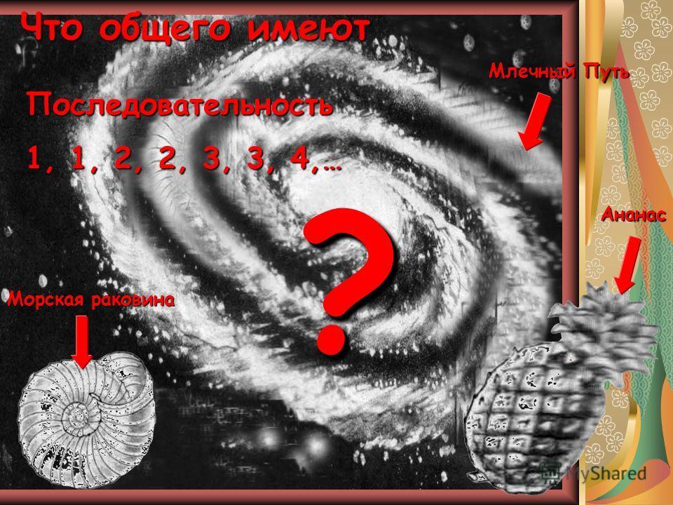 Что общего имеют Млечный Путь Морская раковина Ананас Последовательность 1, 1, 2, 2, 3, 3, 4,… ??