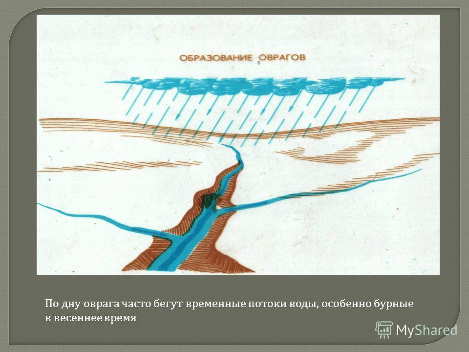 По дну оврага часто бегут временные потоки воды, особенно бурные в весеннее время