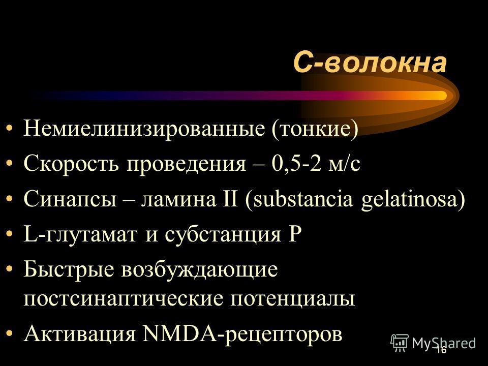 16 С-волокна Немиелинизированные (тонкие) Скорость проведения – 0,5-2 м/с Синапсы – ламина II (substancia gelatinosa) L-глутамат и субстанция Р Быстрые возбуждающие постсинаптические потенциалы Активация NMDA-рецепторов