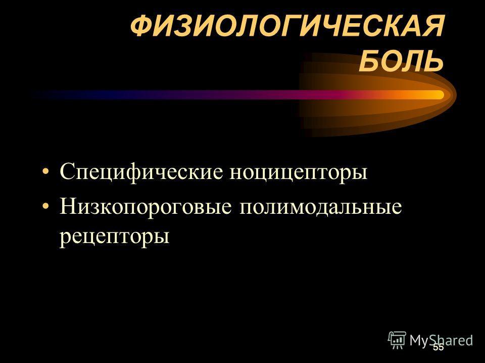 55 ФИЗИОЛОГИЧЕСКАЯ БОЛЬ Специфические ноцицепторы Низкопороговые полимодальные рецепторы