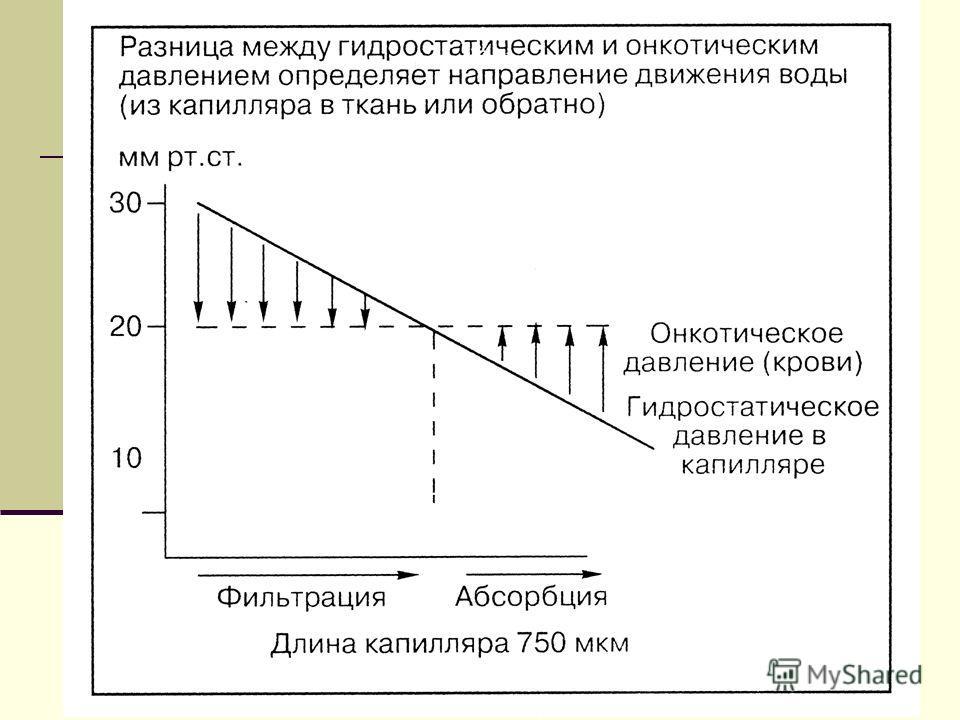 Мурманск, 200511