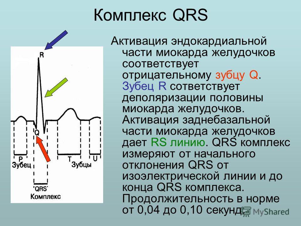 Комплекс QRS Активация эндокардиальной части миокарда желудочков соответствует отрицательному зубцу Q. Зубец R сответствует деполяризации половины миокарда желудочков. Активация заднебазальной части миокарда желудочков дает RS линию. QRS комплекс изм