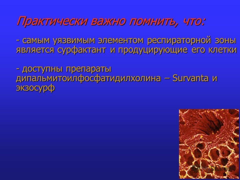 Практически важно помнить, что: - самым уязвимым элементом респираторной зоны является сурфактант и продуцирующие его клетки - доступны препараты дипальмитоилфосфатидилхолина – Survantа и экзосурф