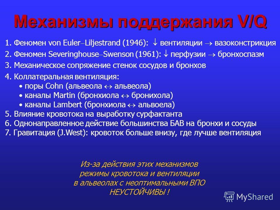 Механизмы поддержания V/Q 1. Феномен von Euler Liljestrand (1946): вентиляции вазоконстрикция 2. Феномен Severinghouse Swenson (1961): перфузии бронхоспазм 3. Механическое сопряжение стенок сосудов и бронхов 4. Коллатеральная вентиляция: поры Cohn (а