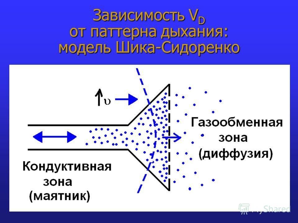 Зависимость V D от паттерна дыхания: модель Шика-Сидоренко