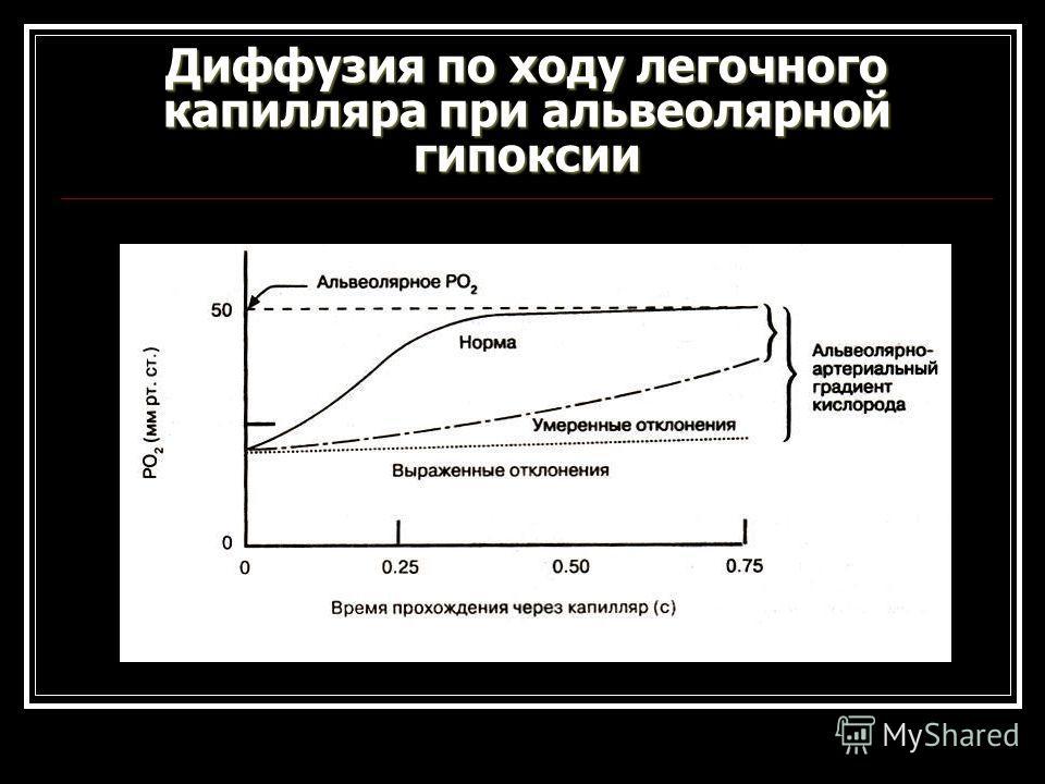 Диффузия по ходу легочного капилляра при альвеолярной гипоксии