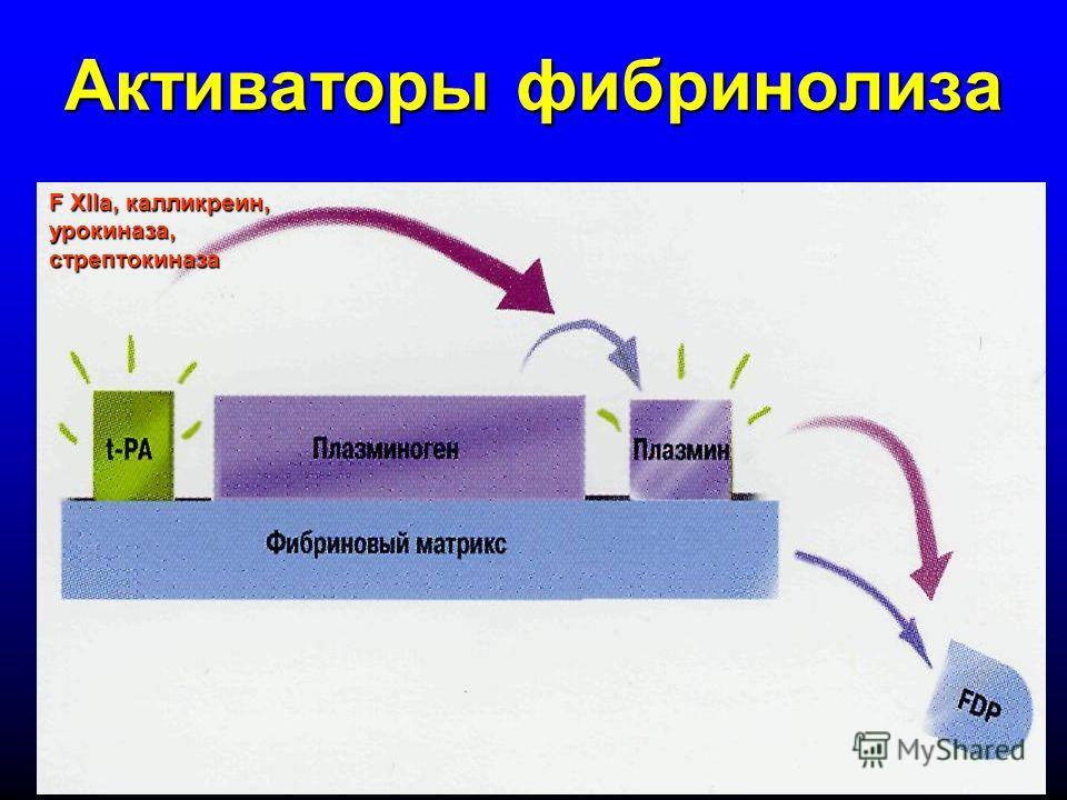 Активаторы фибринолиза F XIIa, калликреин, урокиназа, стрептокиназа
