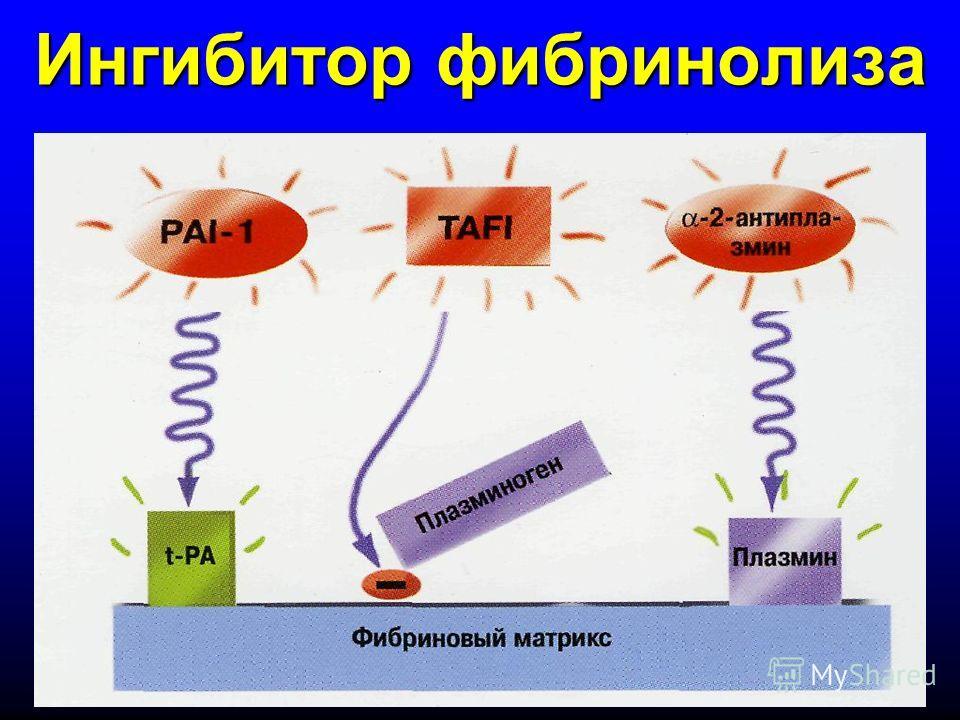 Ингибитор фибринолиза