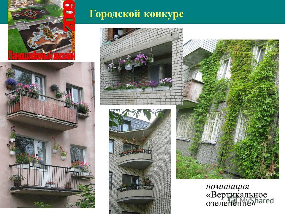 номинация «Вертикальное озеленение» Городской конкурс
