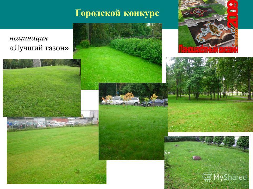 номинация «Лучший газон» Городской конкурс