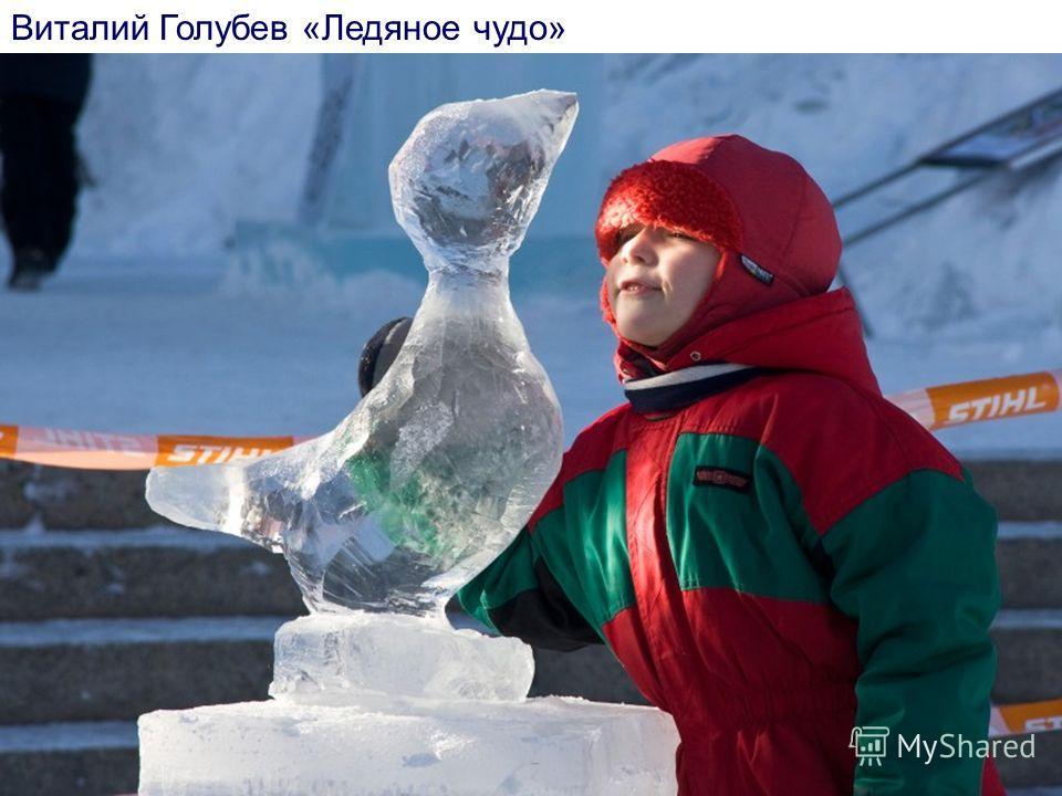 Виталий Голубев «Ледяное чудо»