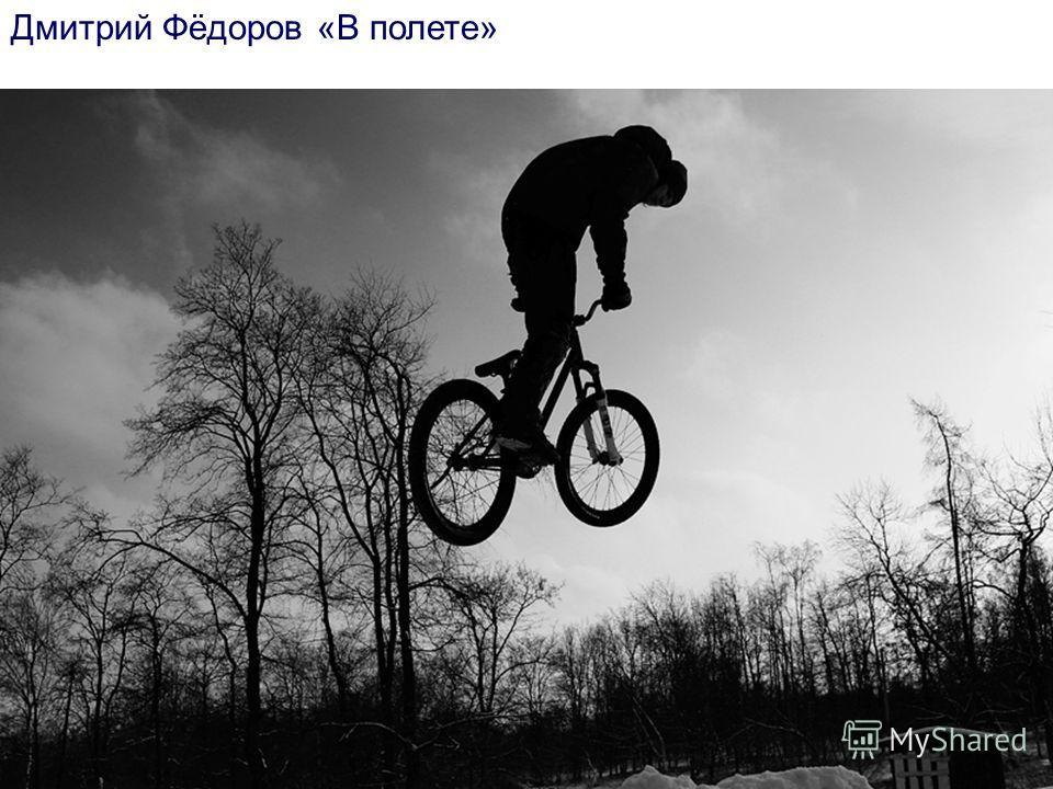 Дмитрий Фёдоров «В полете»